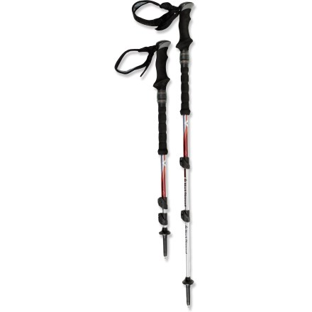 black diamond trail shock trekking poles