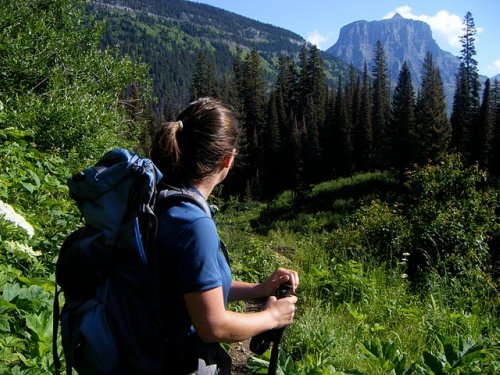 Gunsight Glacier National Park Pictures