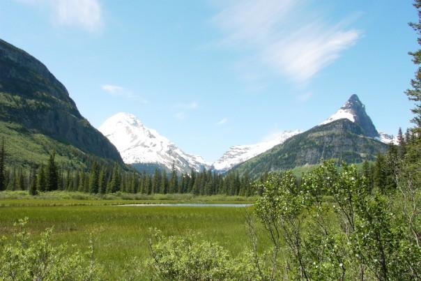 Gunsight Trail - Meadow and Mountain Photo