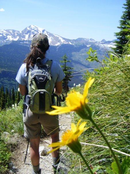 Highline Trail - Yellow Wildflower