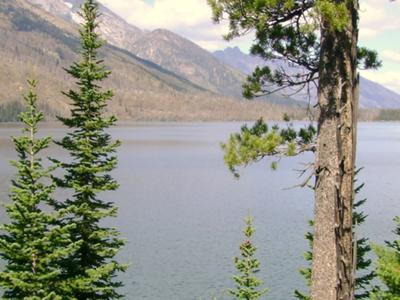 Jenny Lake-south of Yellowstone National Park