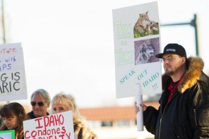 Wolf Trapping Protests by Shawn Gust/CDA Press