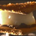 S'Mores Campfire Kit: Traditional Desserts with a Healthy, Modern Twist
