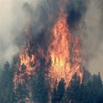Safety Tips for Hiking & Camping During Fire Season