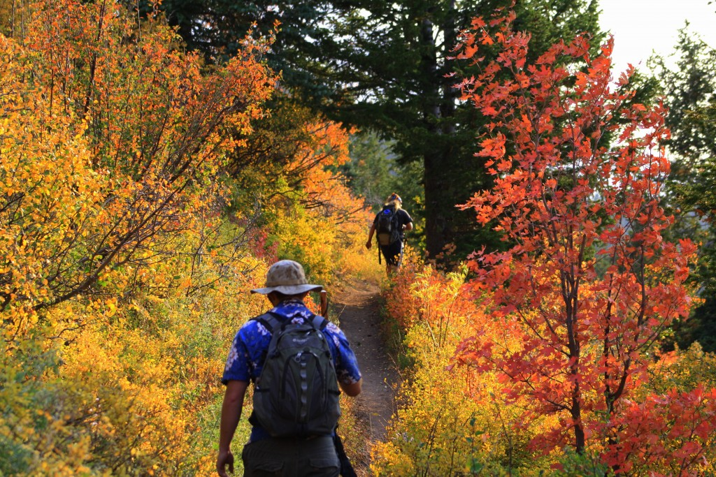 Best Five Fall Hikes In The Rocky Mountains Gnptg