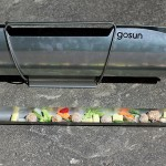 GoSun Solar Cooker: The Eco-Friendly, Camper-Friendly Stove