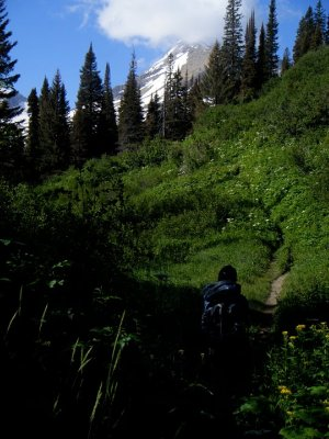 Gunsight Trail Backpacking Pictures