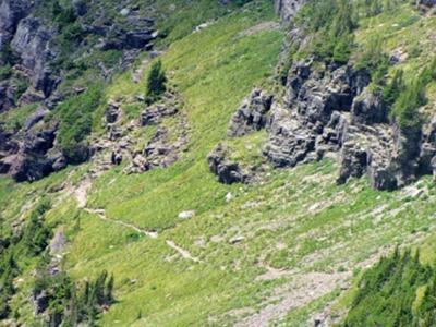 Glacier Hidden Trail
