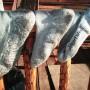 drying smartwool socks