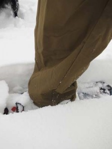 snowshoeing in crester pants