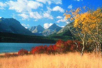 Glacier National Park Fall Hikes