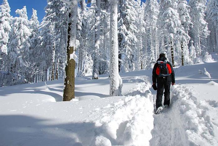 Best Winter Hiking Boots Gnptg